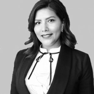 Chief Esli Frias, J.D. - Chief Office Administrator of Shield Litigation LLP.
